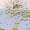 Serenity In The Spring Snow by Tami Quigley