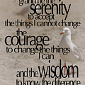 Serenity Prayer 01 by Vicki Ferrari