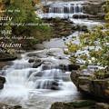 Serenity Prayer by Dale Kincaid