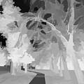Series Of Black And White 47 by Funmi Adeshina
