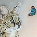 Serval by Michelle McAdams