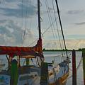 Set Sail by Alison Belsan