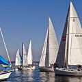 Set Sail by Tom Dowd