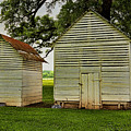 Setting Pen And Chicken Coop by Judy Vincent