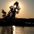 Setting Sun At Cypress Hills by Carol Hathaway