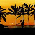 Setting Sun In The Tropics by Michael Vigliotti