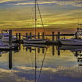 Setting Sun Reflections by Paula Porterfield-Izzo