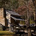 Settlers Cabin Cades Cove by Douglas Barnett