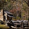 Settlers Cabin by Douglas Barnett