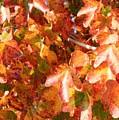 Seurat-like Fall Leaves by Carol Groenen