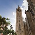 Sevilla by Andre Goncalves