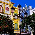 Sevilla - Espana by Carlos Alkmin