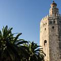 Seville - A View Of Torre Del Oro 2 by Andrea Mazzocchetti