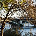 Seville - The Triana Bridge 2  by Andrea Mazzocchetti