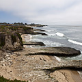 Seymour Marine Discovery Center Santa Cruz by Jason O Watson