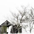 Shabby Barn by Kathy Jennings