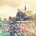 Shabby Chic Love Locks Near Notre Dame Paris by Sandra Rugina