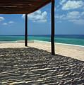 Shade By The Beach by Bill McClurg