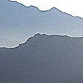 Shades Of Grey by L Cecka