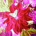 Shades Of Pink Flowers by Carlene Harris