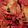 Shades Of Spring by Elizabeth Tillar