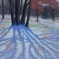 Shadow Catcher by Julie Mayser
