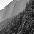 Shadow Cliffs by Eric Bass