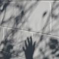 Shadow Hand by Susana Maria  Rosende