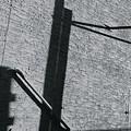 Shadow by Julian Grant