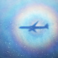 Shadow Of An Aeroplane Surrounded By A Rainbow Halo by Sami Sarkis