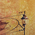 Shadow Of Light by Ryan Fox