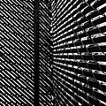 Shadow Pattern No. 208 by Fei A