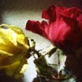 Shadow Roses by Sherrie Triest