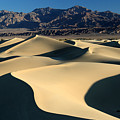 Shadows And Light On The Sand Dunes by Pierre Leclerc Photography