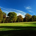 Shadows And Trees Of The Afternoon - Monmouth Battlefield Park by Angie Tirado