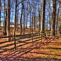 Shadows In Autumn by Reid Callaway