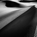 Shadows In The Sand by Marzena Grabczynska Lorenc