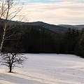 Shadows On A Snow Covered Field by Bill Driscoll