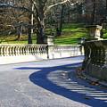 Shadows On The Bridge by Susan Moore