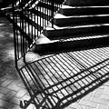 Shadows Series-1 by Arlane Crump