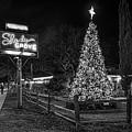 Shady Grove Austin Bw by Tod and Cynthia Grubbs