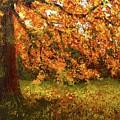 Shady Oak by Barrie Stark