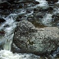 Shady Stream Boulder by Norman Andrus