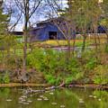 Shaker Lake Geese by Sam Davis Johnson