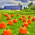 Shaker Pumpkin Harvest by Sam Davis Johnson