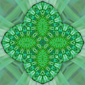 Shamrock In Abstract by Linda Phelps
