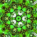 Shamrock Pattern by Brenae Cochran