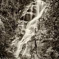 Shannon Falls - Bw by Stephen Stookey