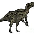 Shantungosaurus Dinosaur by Elena Duvernay