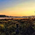 Sharing A September Sunrise With A Retriever by Dale Kauzlaric